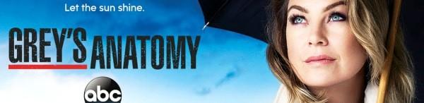 Greys Anatomy season 13 start date