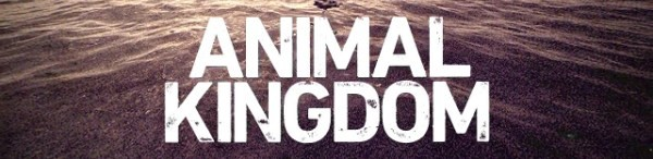 Animal Kingdom season 2 start date